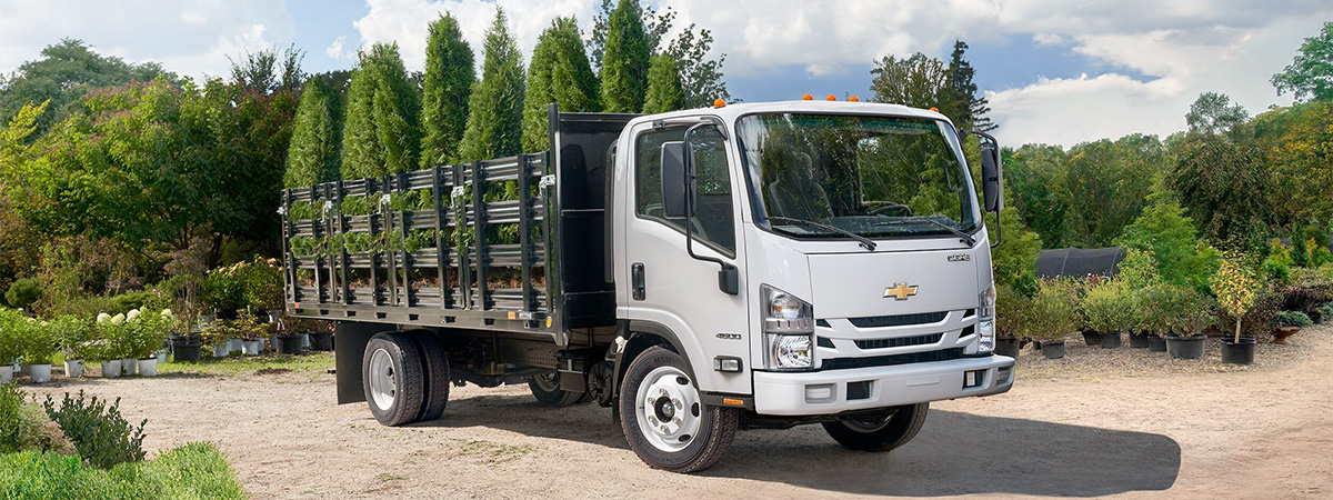 Chevy Low Cab Forward Side Angle transporting trees
