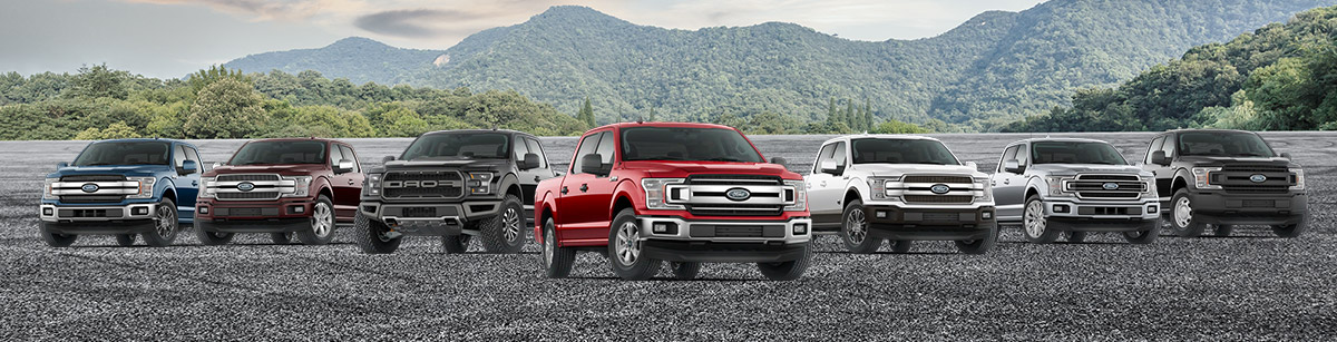 2020 Ford F-150 lineup on a mountain background