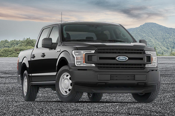 2020 Ford F-150 XL on a mountain background