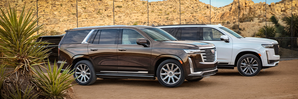 2021 Cadillac Escalade Two-Vehicle Shot Featuring Escalade Premium Luxury in Dark Mocha Metallic Exterior and Escalade Sport in Abalone White Tricoat; Pre-Production model shown not product correct for prodcution models.