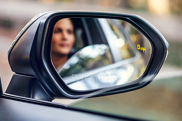 Blind Spot Monitor with Rear Cross-Traffic Alert
